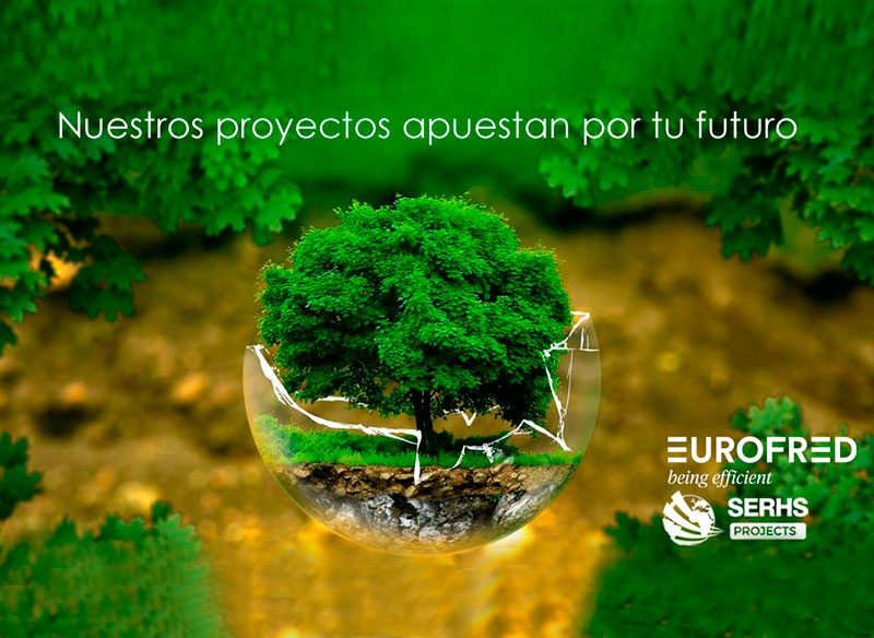 SERHS Projects y Eurofred - Eficiencia y efectividad